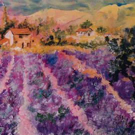Elaine Elliott - Lavender Fields in Provence