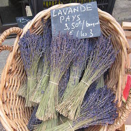 Pema Hou - Lavender for Sale