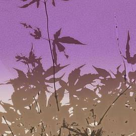 Kathy Barney - Purple Haiku