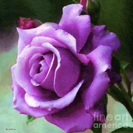 RC DeWinter - Lavender Lady