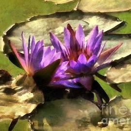 RC DeWinter - Lavender Lotus