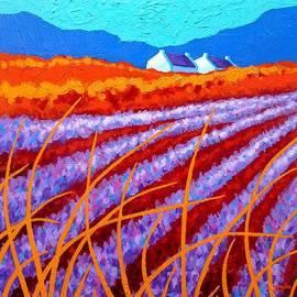 John  Nolan - Lavender Meadow