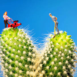 Paul Ge - Lawn mowing on cactus II