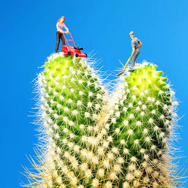 Paul Ge - Lawn mowing on cactus