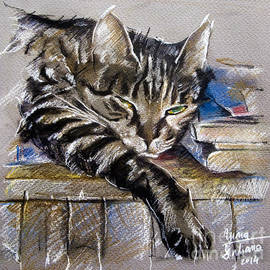 Daliana Pacuraru - Lazy Cat Portrait - Drawing