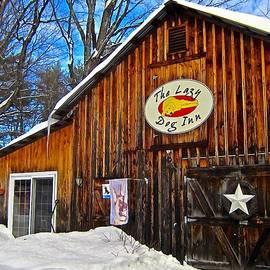 Elizabeth Tillar - Lazy Dog Inn