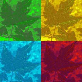 Barbara McDevitt - Leaf Pop Art