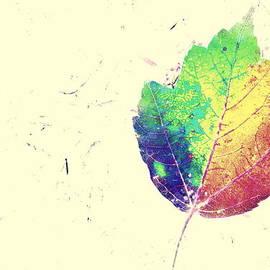 Kathy Barney - Leafy