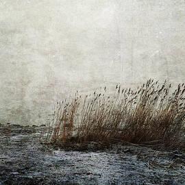 Randi Grace Nilsberg - Leaning Straws