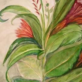 Marian Hebert - Leaves hiding Flowers