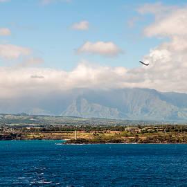 Karen Regan - Leaving Kauai