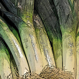 Beth Wolff - Leeks at the farmers market