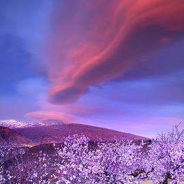 Guido Montanes Castillo - Lenticular clouds
