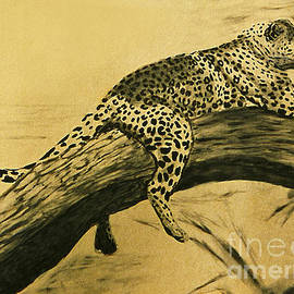 William Cain - Leopard in Tree Art Print