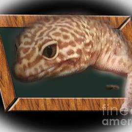 Donna Brown - Leopard Skink