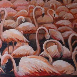 Brigitte Roshay - Les flamants des Emirats