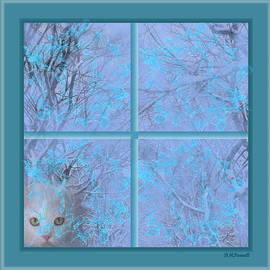 Diane Parnell - Let Me In