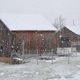 Audie Thornburg - Lewis Barns on a Snowy Day