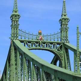 Ann Horn - Liberty Bridge Budapest