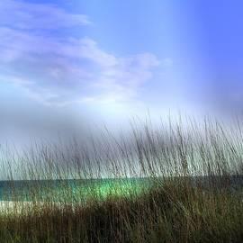 Athala Carole Bruckner - Lido beach