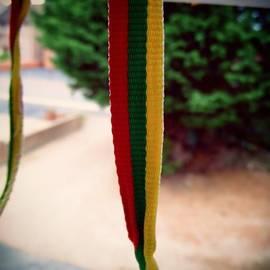 Deimantas Strolia - #lietuva #lithuanian #lithuania #flag