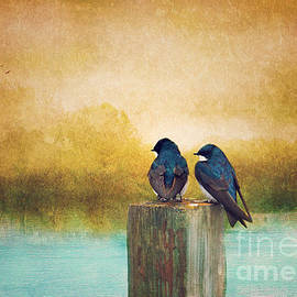 Reflective Moments  Photography and Digital Art Images - Life Long Friends - Days End