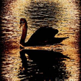 Bobbee Rickard - Life Mirrors Our Beliefs