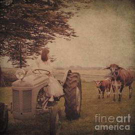 ShabbyChic  fine art photography   - Life on the farm