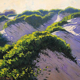 Graham Gercken - Light Across The Dunes
