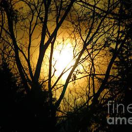 Karry Degruise - Light Beyond The Darkness