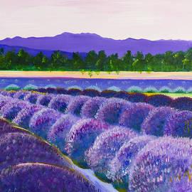 Barbara Klimova - Light Lavender