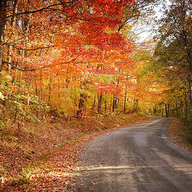 Randall Branham - Light of Autumn