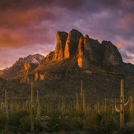 Peter Coskun - Light of the New Year