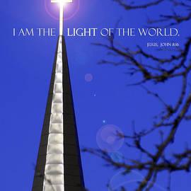 David T Wilkinson - Light of the World