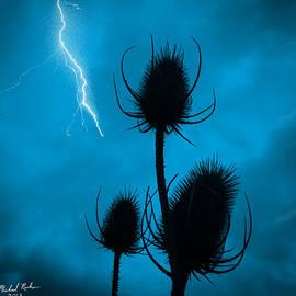 Michael Rucker - Lightning Spikes