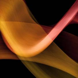 Dave Markman - Lightpainting - Orange Flamenco