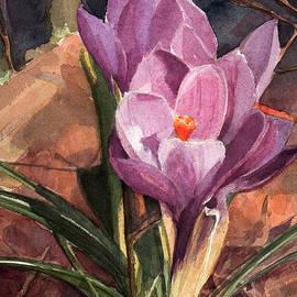 Greta Corens - Lilac Crocuses