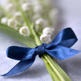 Jaroslaw Blaminsky - Lilly of the valley and blue silk ribbon
