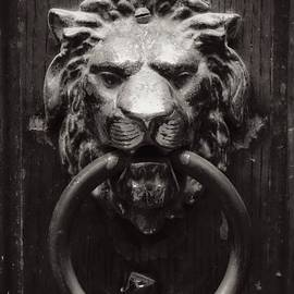 Carol Groenen - Lion Door Knocker