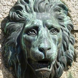 Charlie Brock - Lion King