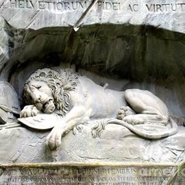 Lynn R Morris - Lion of Lucerne