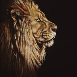 Karl Hamilton-Cox - Lion Portrait