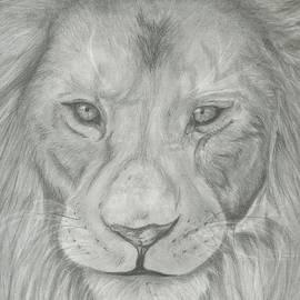 Raquel Ventura - Lion