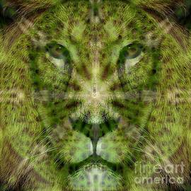 Michael African Visions - Lion Spirit