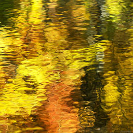 Christina Rollo - Liquid Gold Abstract Reflection