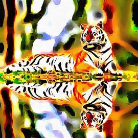 Catherine Lott - Lit Tiger Reflected