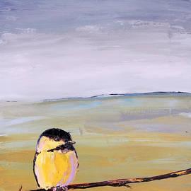 Carolyn Doe - Little Bird Series