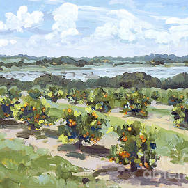 Blair Updike - Little Citrus Grove