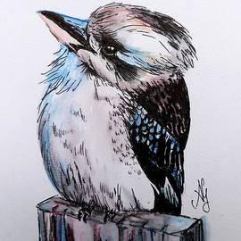 Anne Gardner - Little kookaburra