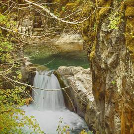 Randy Hall - Little Qualicum Falls